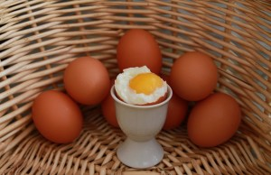 Bester Eierkocher der Welt